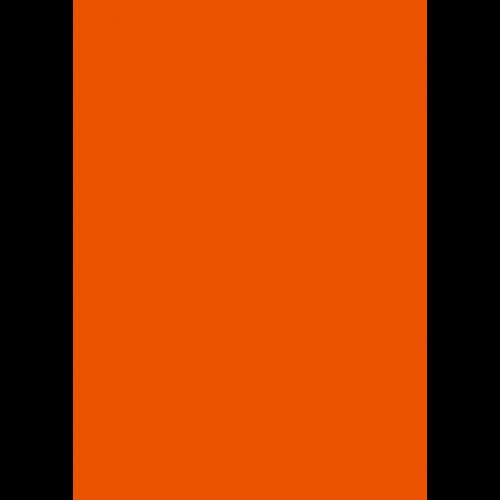 1L Spritzfarbe nach RAL - RAL 2004 Reinorange
