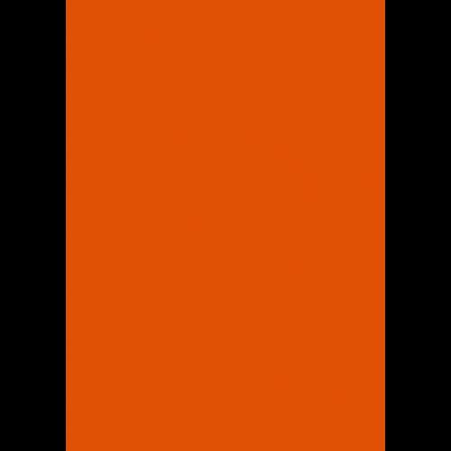 1L Spritzfarbe nach RAL - RAL 2009 Verkehrsorange