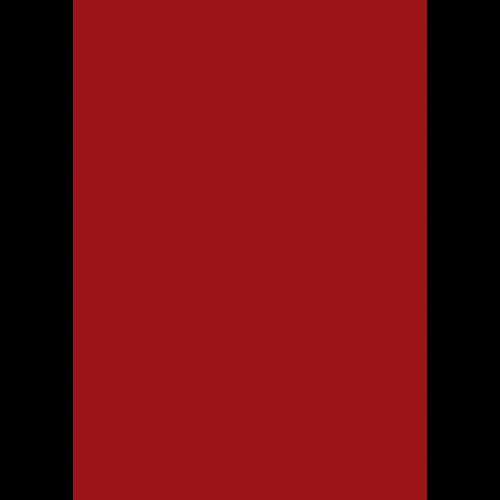RAL 9ml Flüssigleder von 'Leather-Doc' RAL 3001 Signalrot