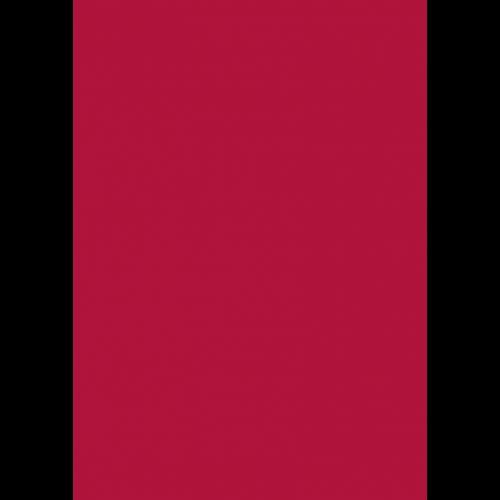 RAL 9ml Flüssigleder von 'Leather-Doc' RAL 3027 Himbeerrot