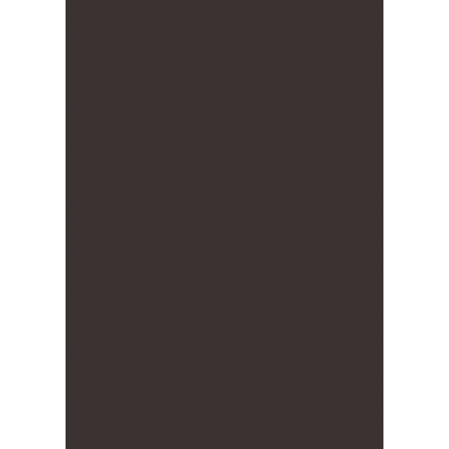 1L Spritzfarbe nach RAL - RAL 8019 Graubraun