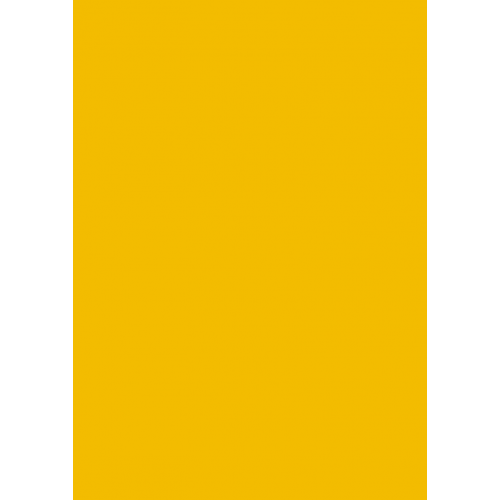 1L Spritzfarbe nach RAL - RAL 1021 Rapsgelb