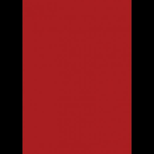 RAL 9ml Flüssigleder von 'Leather-Doc' RAL 3000 Feuerrot