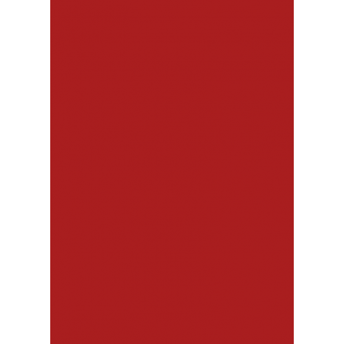 1L Spritzfarbe nach RAL - RAL 3002 Kaminrot