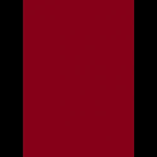 RAL 9ml Flüssigleder von 'Leather-Doc' RAL 3003 Rubinrot