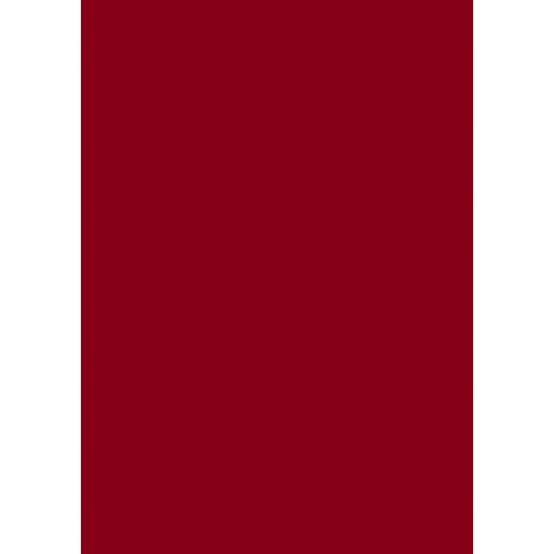 1L Spritzfarbe nach RAL - RAL 3003 Rubinrot