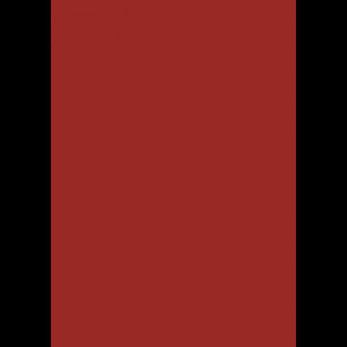 1L Spritzfarbe nach RAL - RAL 3013 Tomatenrot