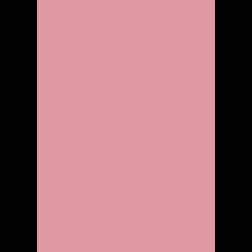 1L Spritzfarbe nach RAL - RAL 3015 Hellrosa