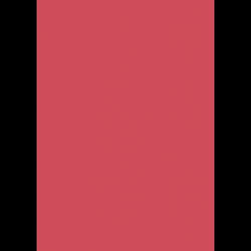 1L Spritzfarbe nach RAL - RAL 3017 Rose