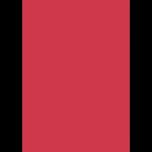 1L Spritzfarbe nach RAL - RAL 3018 Erdbeerrot