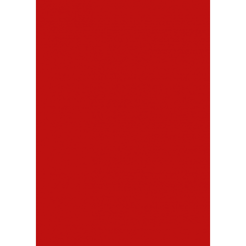 1L Spritzfarbe nach RAL - RAL 3020 Verkehrsrot