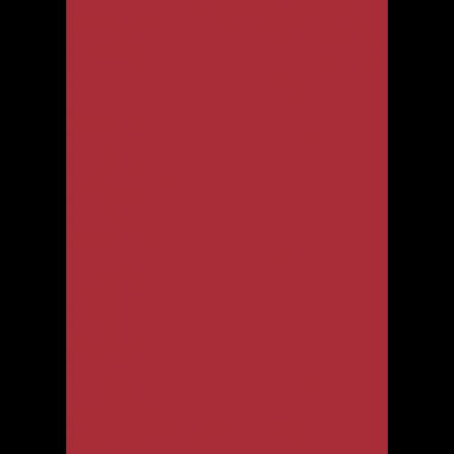 1L Spritzfarbe nach RAL - RAL 3031 Orientrot