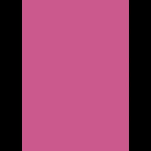1L Spritzfarbe nach RAL - RAL 4003 Erikaviolett