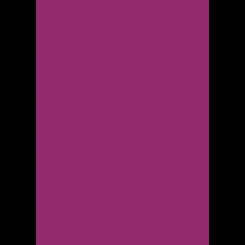 1L Spritzfarbe nach RAL - RAL 4006 Verkehrspurpur
