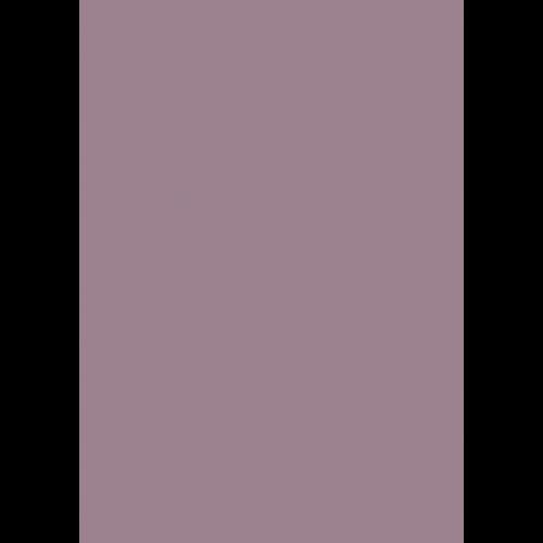 1L Spritzfarbe nach RAL - RAL 4009 Pastellviolett