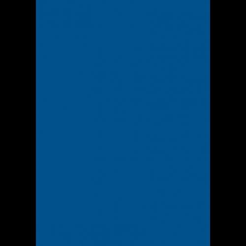 1L Spritzfarbe nach RAL - RAL 5017 Verkehrsblau