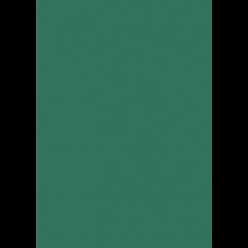 1L Spritzfarbe nach RAL - RAL 6000 Patinagrün