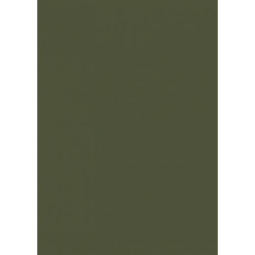 1L Spritzfarbe nach RAL - RAL 6003 Olivgrün