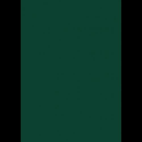 1L Spritzfarbe nach RAL - RAL 6005 Moosgrün