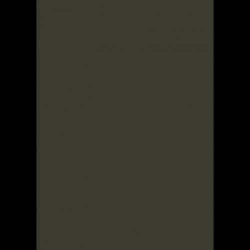1L Spritzfarbe nach RAL - RAL 6006 Grauoliv