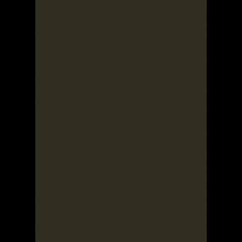 1L Spritzfarbe nach RAL - RAL 6008 Braungrün
