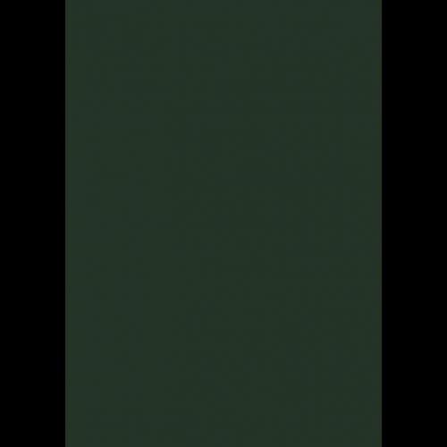 Lederfarbe nach RAL von 'Leather-Doc' RAL 6009 Tannengrün