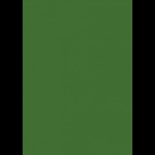 1L Spritzfarbe nach RAL - RAL 6010 Grasgrün