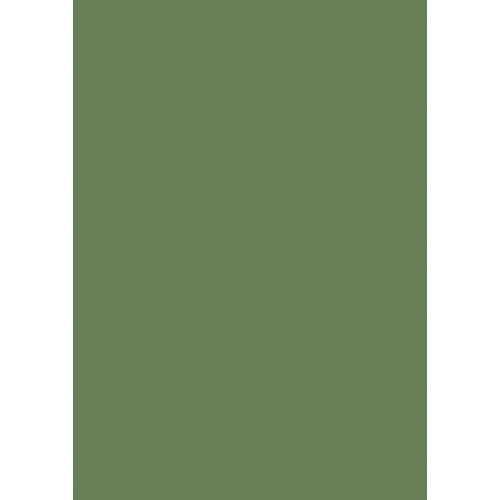 1L Spritzfarbe nach RAL - RAL 6011 Resedagrün
