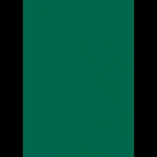 RAL 9ml Flüssigleder von 'Leather-Doc' RAL 6016 Türkisgrün