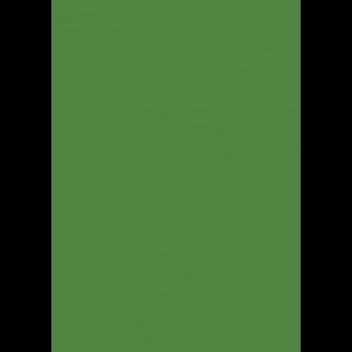 RAL 9ml Flüssigleder von 'Leather-Doc' RAL 6017 Maigrün