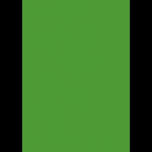 RAL 9ml Flüssigleder von 'Leather-Doc' RAL 6018 Gelbgrün
