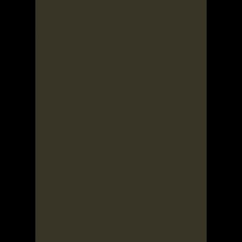 RAL 9ml Flüssigleder von 'Leather-Doc' RAL 6022 Braunoliv
