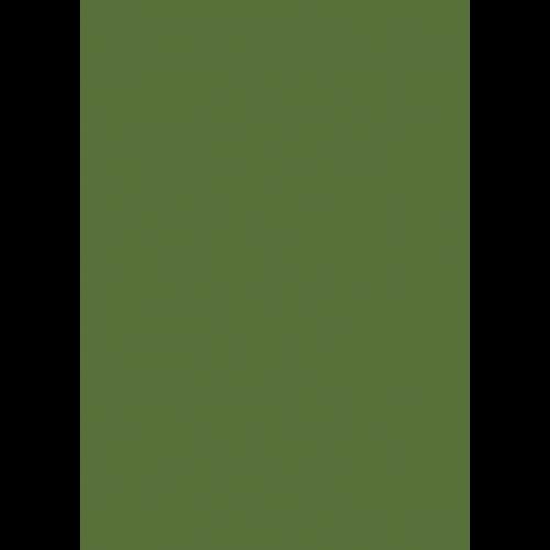 RAL 9ml Flüssigleder von 'Leather-Doc' RAL 6025 Farngrün