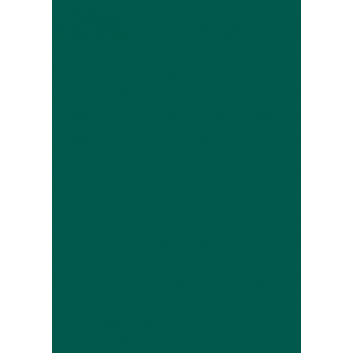 RAL 9ml Flüssigleder von 'Leather-Doc' RAL 6026 Opalgrün