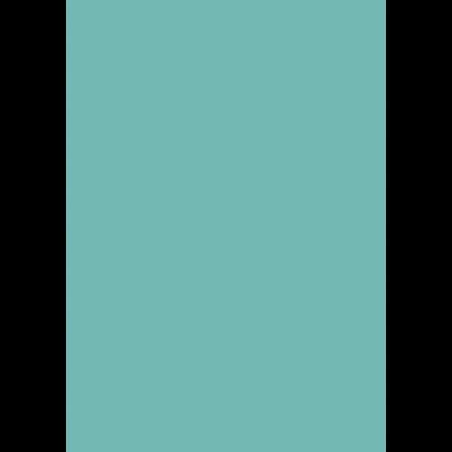 Lederfarbe nach RAL von 'Leather-Doc' RAL 6027 Lichtgrün