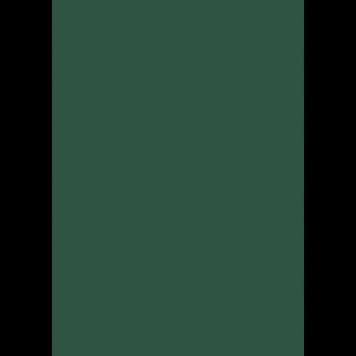 Lederfarbe nach RAL von 'Leather-Doc' RAL 6028 Kieferngrün
