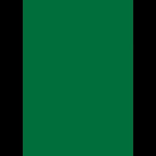Lederfarbe nach RAL von 'Leather-Doc' RAL 6029 Minzgrün