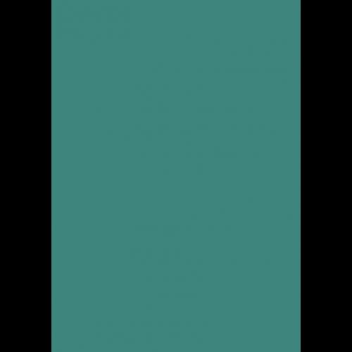 RAL 9ml Flüssigleder von 'Leather-Doc' RAL 6033 Minttürkis
