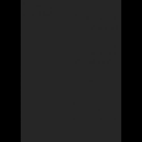 1L Spritzfarbe nach RAL - RAL 9004 Signalschwarz