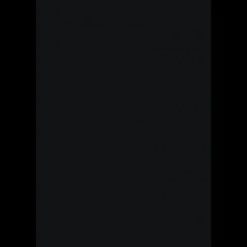 400ml Lederfarbspray - RAL 9005 Tiefschwarz